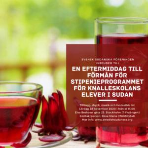 bild SSF Stipendiedagen poster 4
